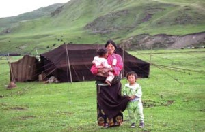 nomadwoman daniel miller